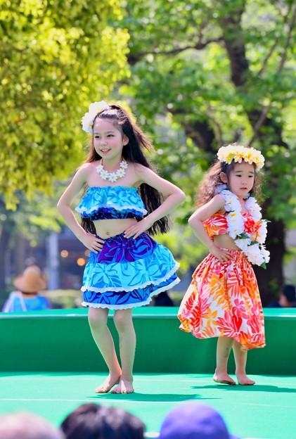 華麗に可愛く踊るフラダンス。。(5) 20180422