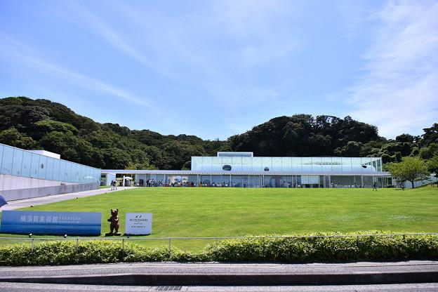 撮って出し。。空母出港で横須賀美術館風景 8月14日