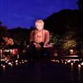 写真: 撮って出し。。長谷灯り 鎌倉大仏ライトアップ 8月26日