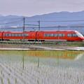 写真: 開成町の田んぼと小田急ロマンスカーGSE。。20180526
