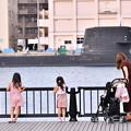 2018年振り返って。。横須賀ヴェルニー公園の風景(3) 20180815