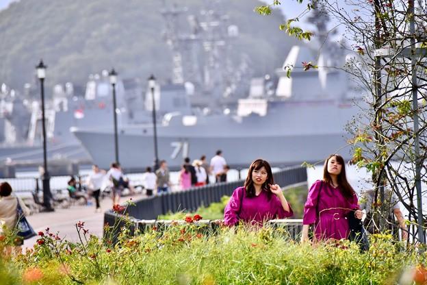 2018年振り返って。。横須賀ヴェルニー公園昼下がり風景20180815