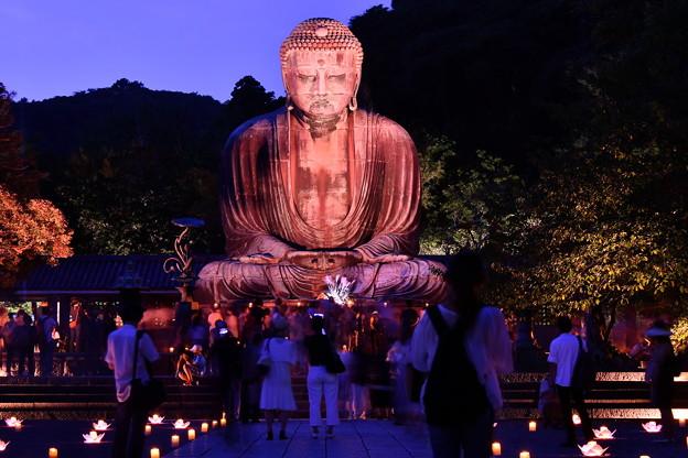 夏の終わりの鎌倉の大仏ライトアップ 長谷灯り(1) 20180826