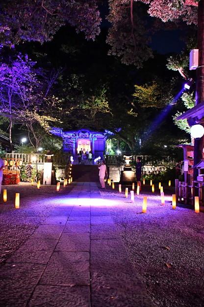 夏の終わり御霊神社ライトアップ 長谷灯り(2) 20180826
