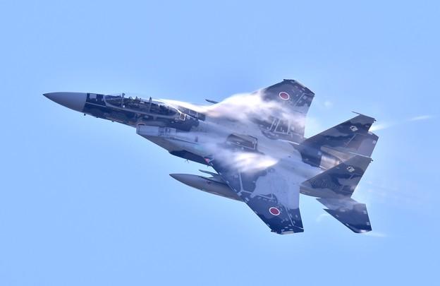 新色の飛行教導群アグレッサー 機動飛行(2)