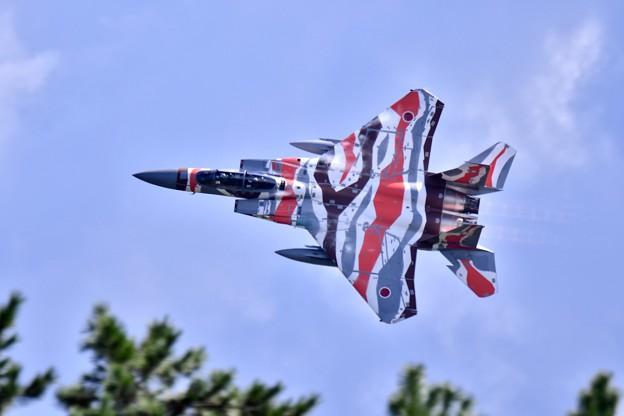 新色の飛行教導群アグレッサー 機動飛行(4) スゲー低く