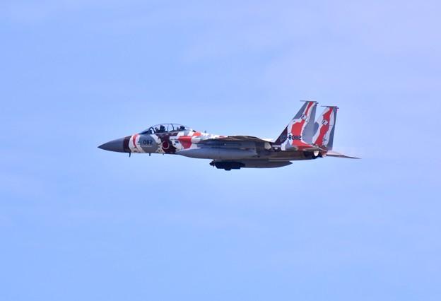新色の飛行教導群アグレッサー 機動飛行(5) ミノカサゴ