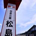 Photos: 8月の撮って出し。。震災後初めての訪れた日本三景 松島