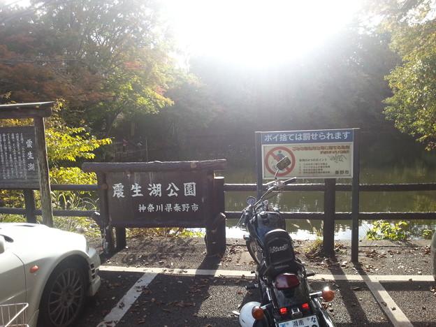 Photos: 20121118_142116