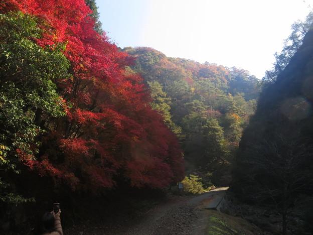生野銀山 (1)