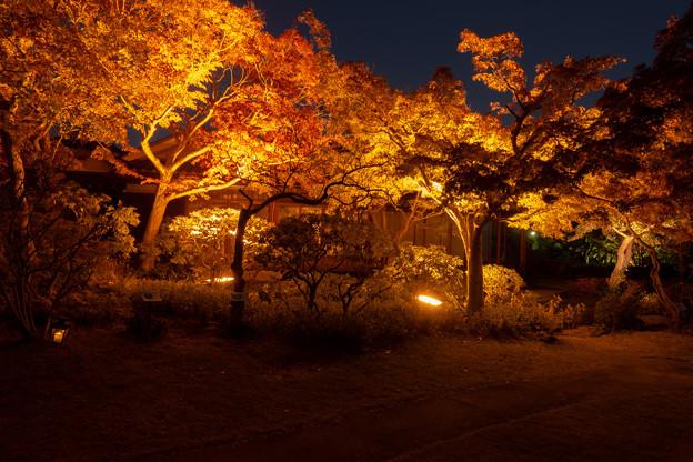 Photos: 須磨離宮公園・3