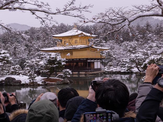 2019雪の金閣寺・1