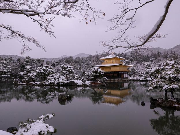 2019雪の金閣寺・2
