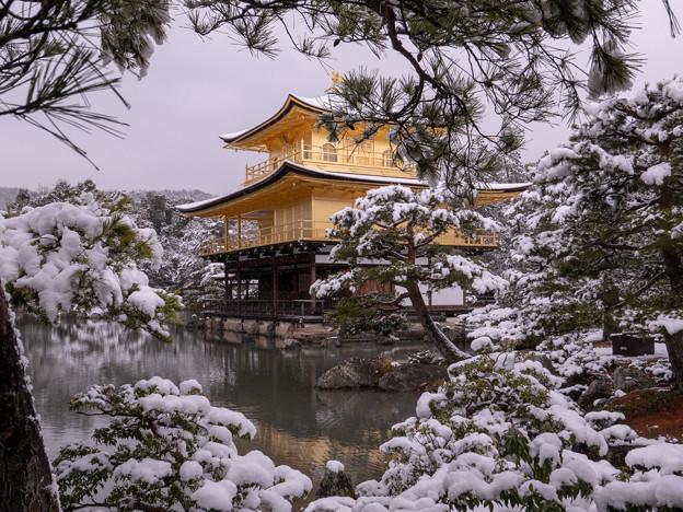 2019雪の金閣寺・4