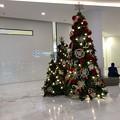 違和感アリなクリスマスイルミネーション (4)