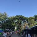 青空のミャダゴン (2)