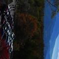 P1770826富士山