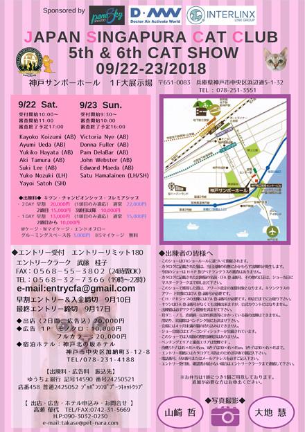 20180922キャットショー 54C71DBA-5915-4CC9-B3C5-C03D72A52CD8