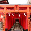 写真: 穴八幡神社 東京都大田区
