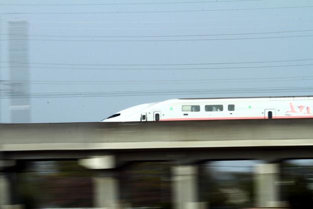 写真: 上越新幹線MAXとき