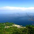 写真: 瀬戸内の海