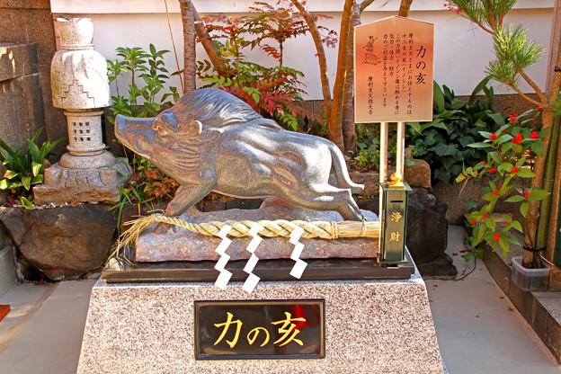 徳大寺 東京都台東区