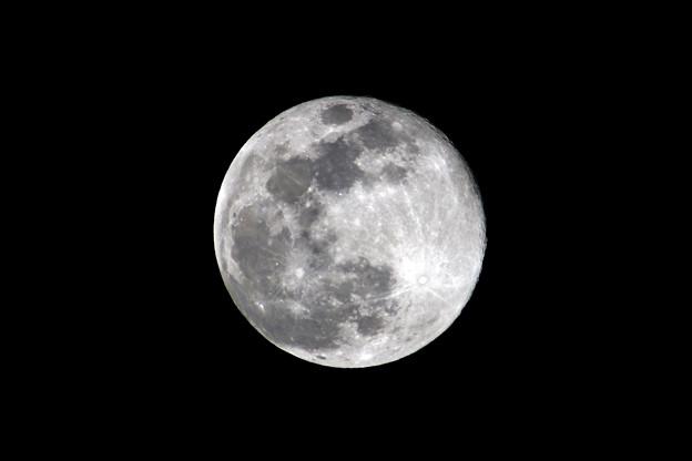 「春分の日」の満月