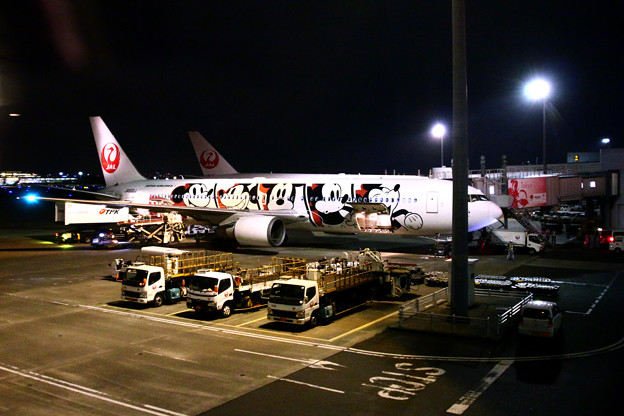 JAL DREAM EXPRESS 90