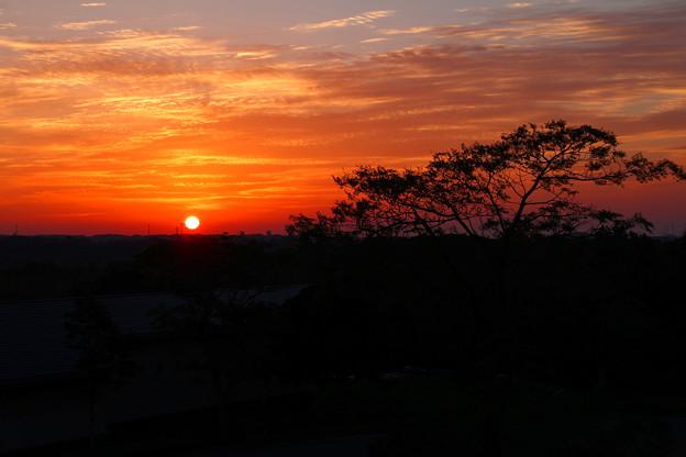 陽はまた昇り