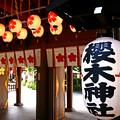 桜木神社 千葉県野田市