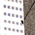 Photos: 都会の蝉