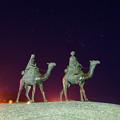 Photos: 月の沙漠