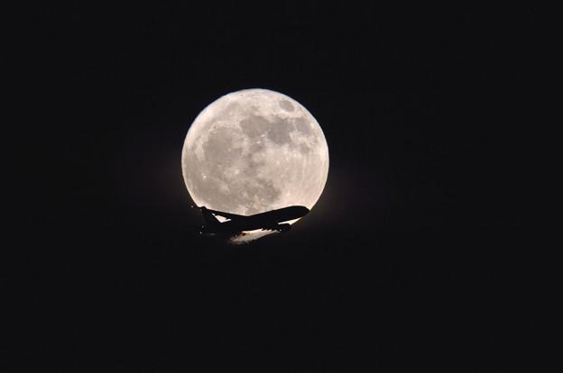 月は待ってくれない