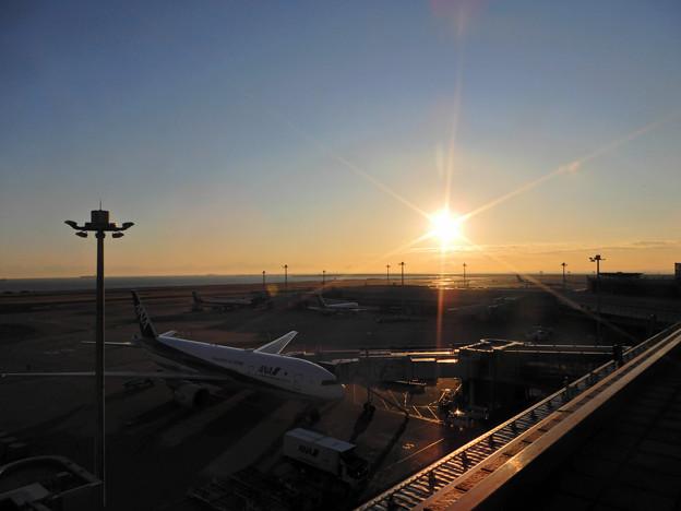 Photos: 眩しい朝陽
