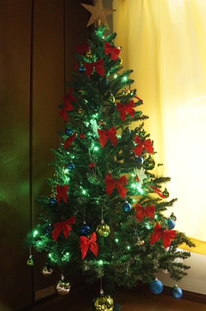 写真: もみの木その木を飾りなさい