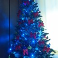 Photos: ブルークリスマスツリー