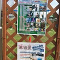 ミュージックタウンわちゃわちゃフェスタ201901