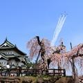 写真: 弘前観桜会100周年記念祝賀飛行