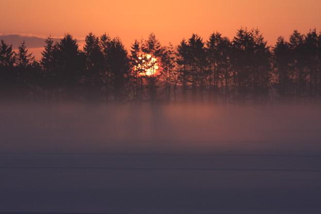 霧のスクリーン