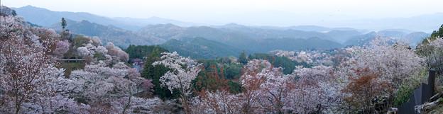 吉野パノラマDSC02461_ed