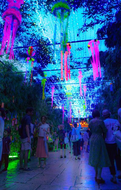 LED天の川-01747