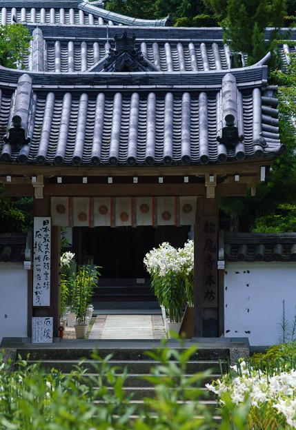 松尾寺-03296