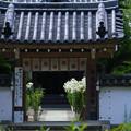 写真: 松尾寺-03296