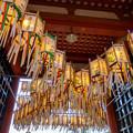 写真: 四天王寺盂蘭盆会-04563
