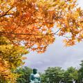 Photos: 長寿大仏DSC08145_ed
