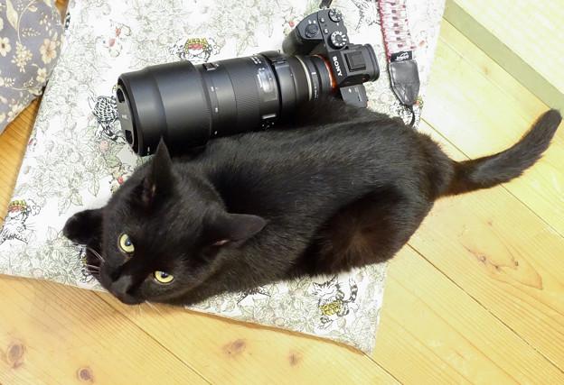 funCameraDSC04620_ed
