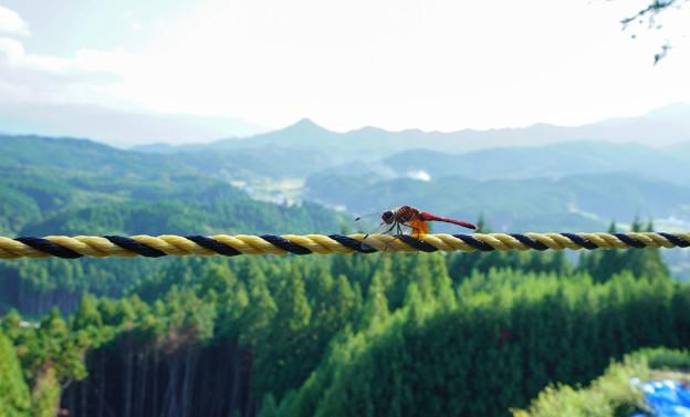 宇陀松山城からDSC01514_ed