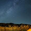 写真: ススキi天の川-05619