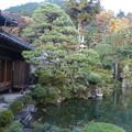 写真: 石谷家住宅庭園DSC00212