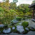 Photos: 石谷家庭園DSC09061_ed